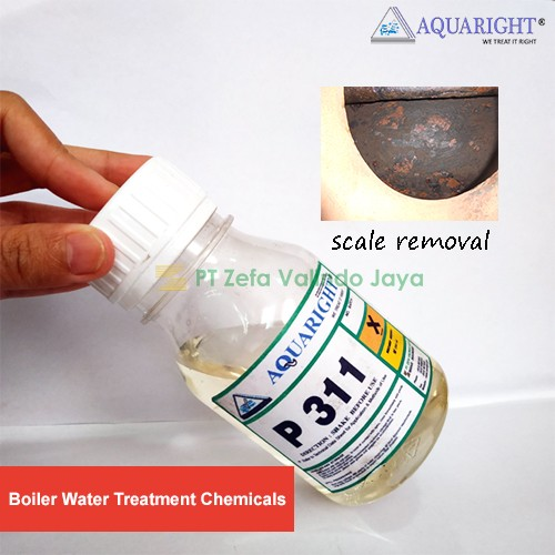 Scale Removal AQUARIGHT P 311