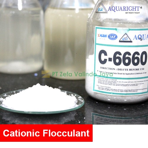 AQUARIGHT C6660 POWDER CATIONIC FLOCCULANT