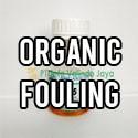 Organic Fouling