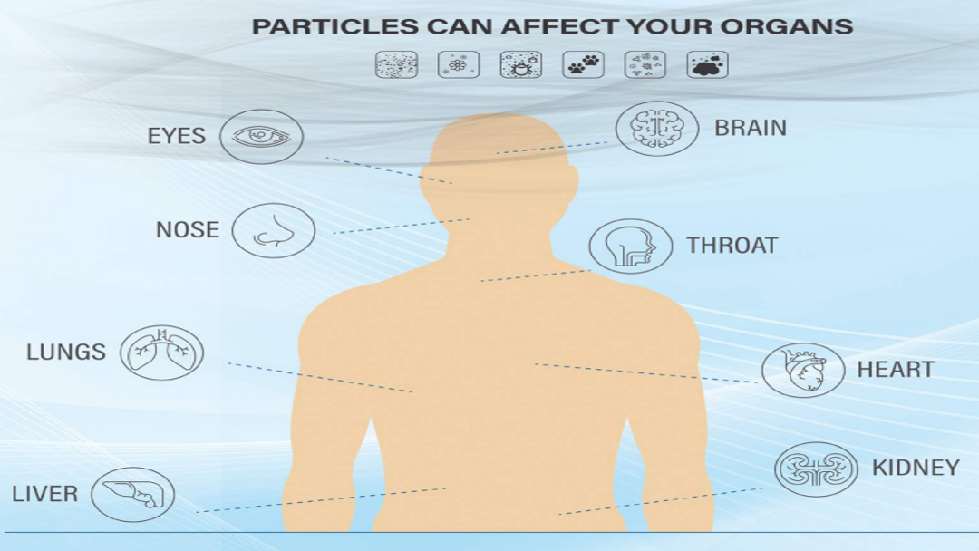 MIA Air Purifier Particle can affect human organs